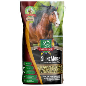 ShineMore Stockfeed